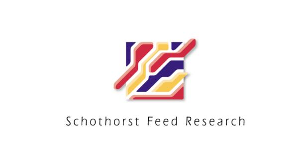 Logo Schorhorst